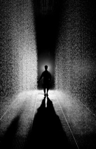 Rain Room (MOMA, installation)